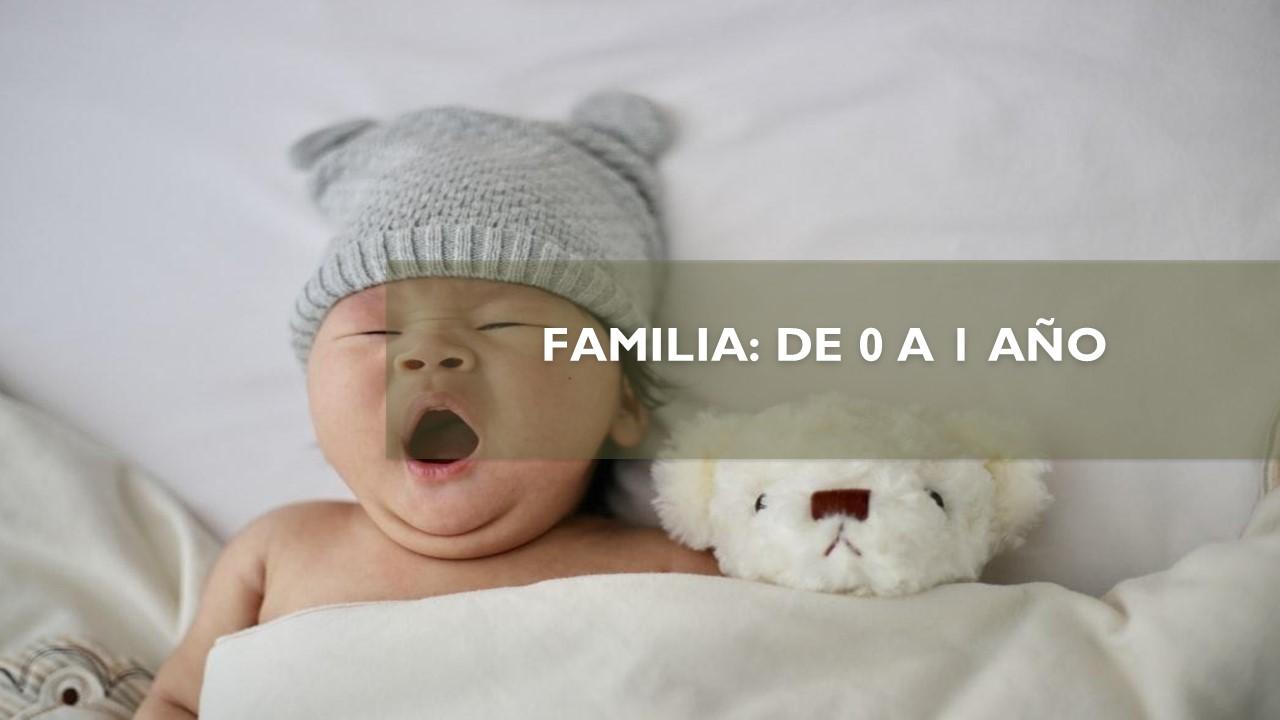 FAMILIA: DE 0 A 1 AÑO