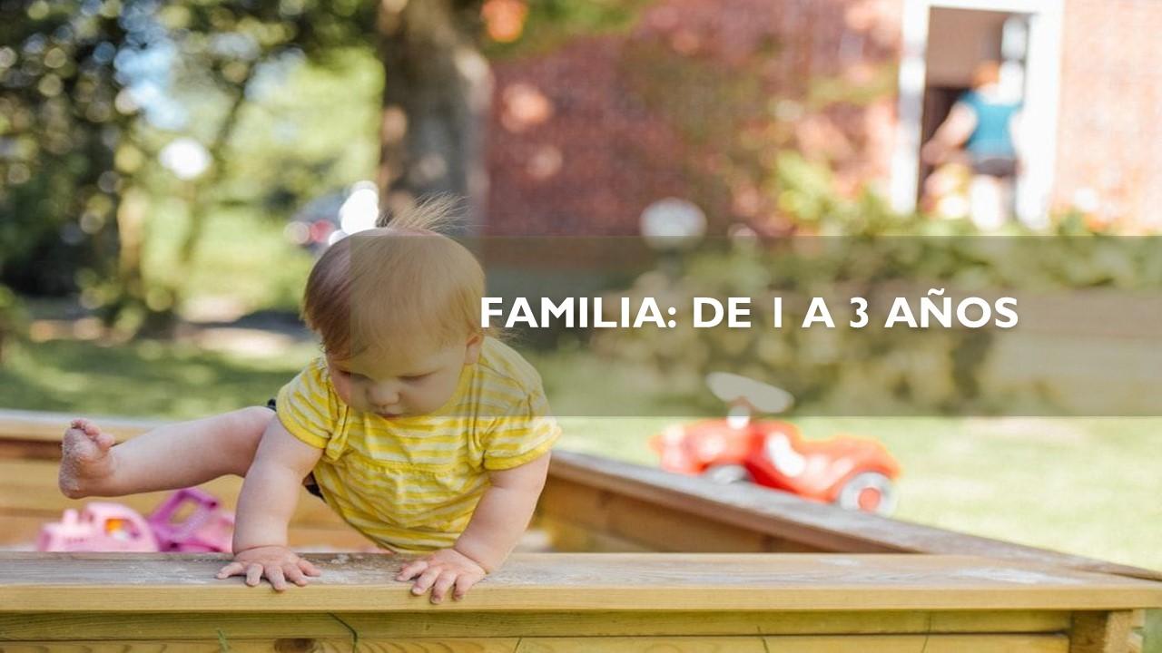 FAMILIA: DE 1 A 3 AÑOS